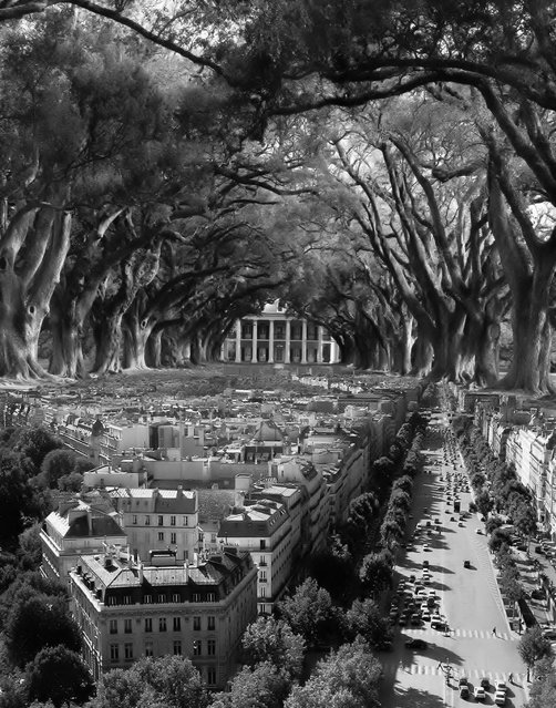 Surreal Art By Thomas Barbey