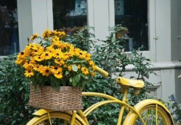 Turn Old Bike into a Original Decoration for your Garden -