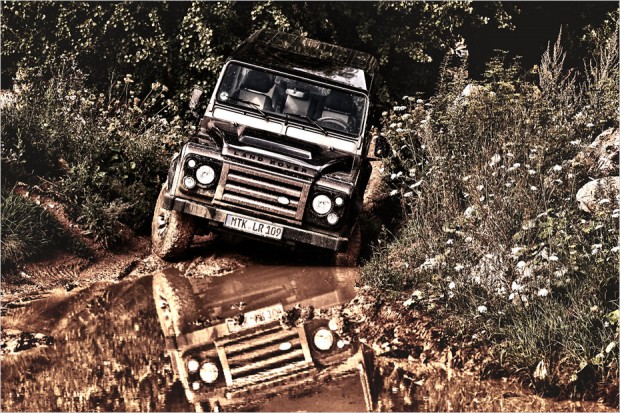Land Rover Defender Rough - Fabian Grass