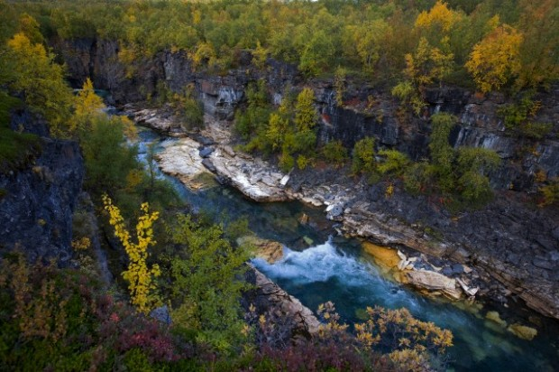 Beautiful view of a canyon with autumnal plants at Abisko national park at Sweden