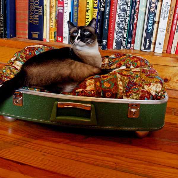 40 Creative ways of using Old Suitcases
