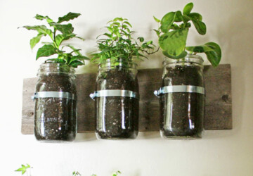25 Planters – DIY and Recycled -