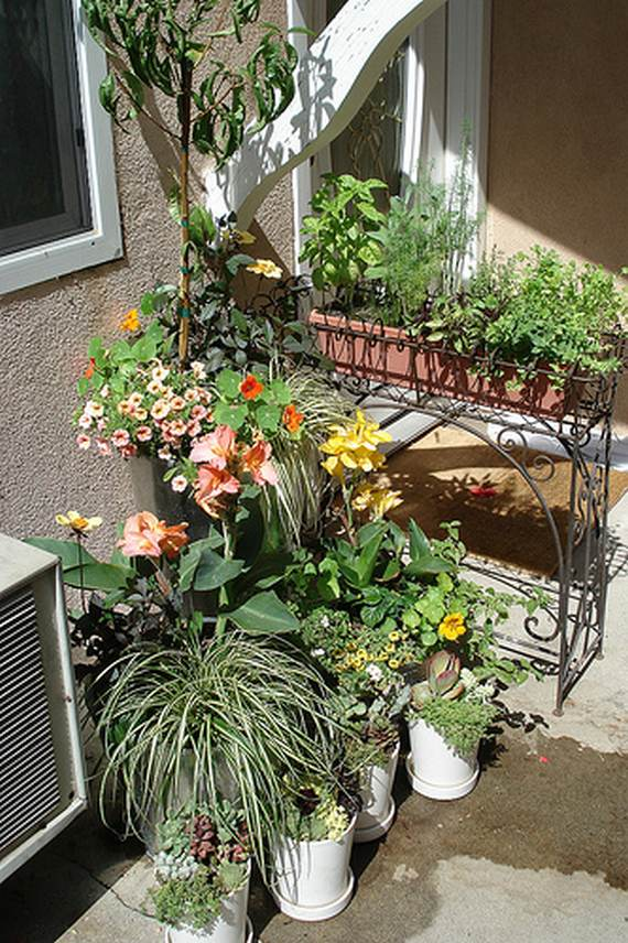 20 Adorable Small Garden Ideas