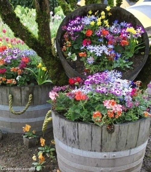 Garden decorating ideas (16)