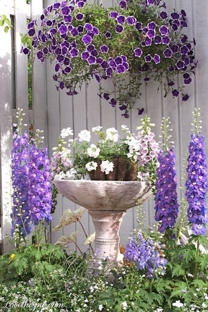 Garden decorating ideas (20)