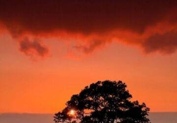 21 Breathtaking Sunset Photography - Sunset, photography, breathtaking