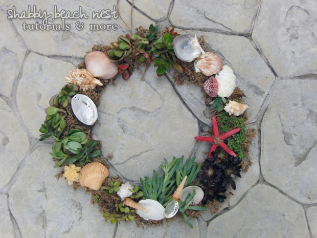 21 Great DIY Succulent Ideas (16)