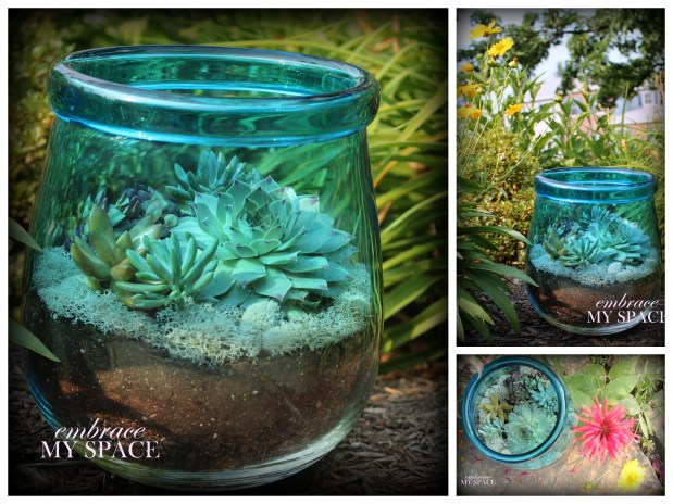 20 Great DIY Succulent Ideas