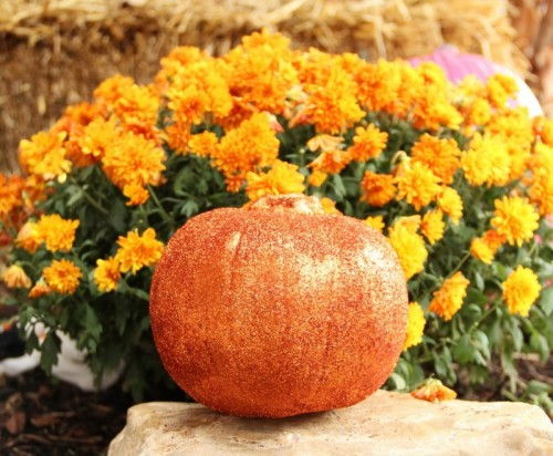 23 Amazing DIY Fall Decorations for Your Home (9)
