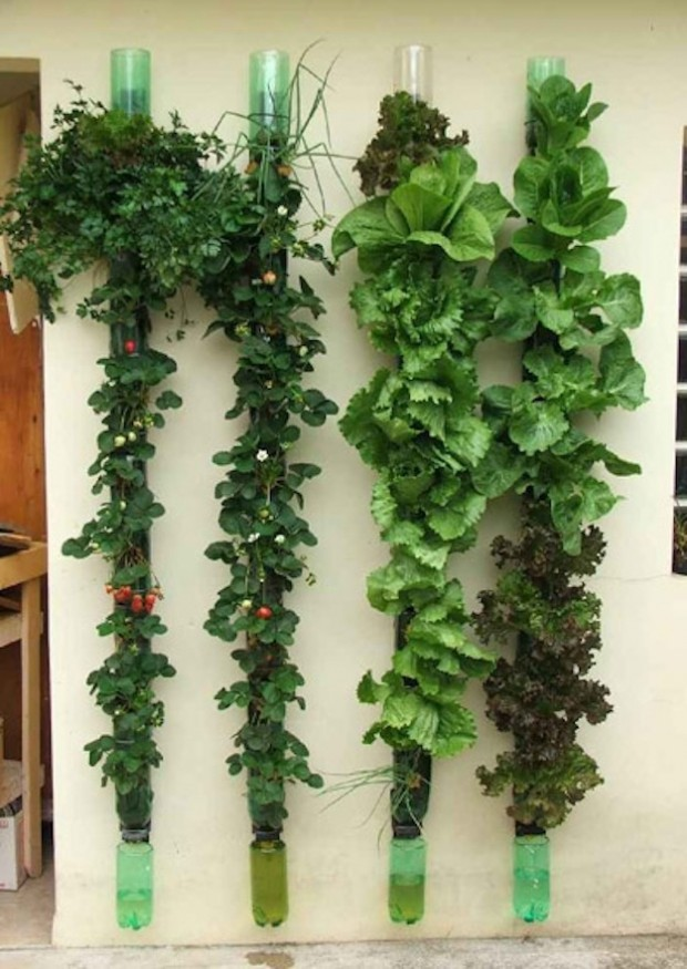 Vertical Gardening Ideas vertical gardening ideas 22 Amazing Vertical Garden Ideas For Your Small Yard