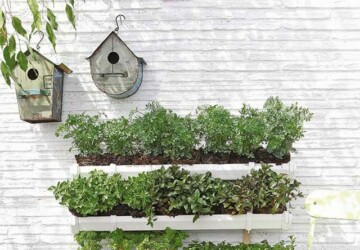 22 Amazing Vertical Garden Ideas for Your Small Yard - Vertical Garden, Small yard