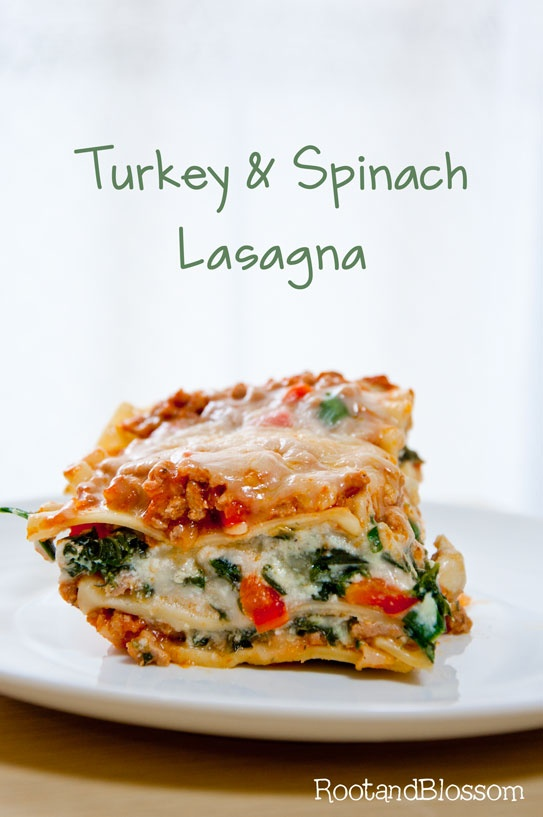 Delicious Lasagna Recipes (8)