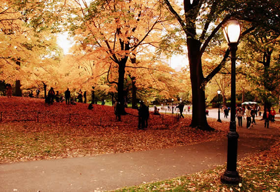 Fall in Central Park, New York (1)