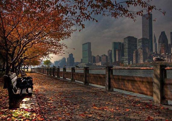 Fall in Central Park, New York (11)