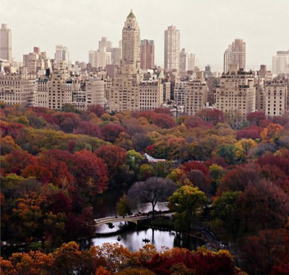 Fall in Central Park, New York (12)