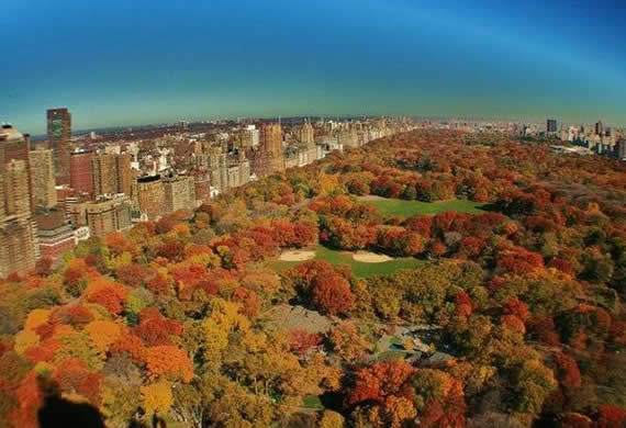 Fall in Central Park, New York (14)