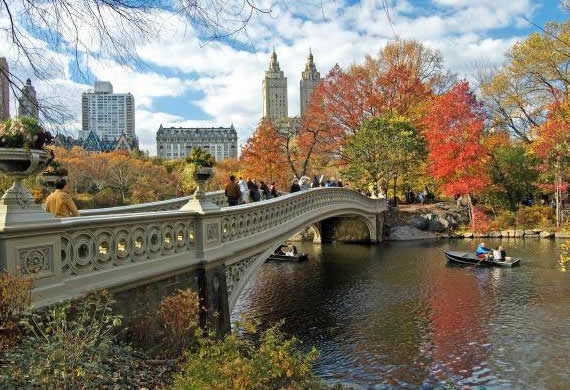 Fall in Central Park, New York (18)