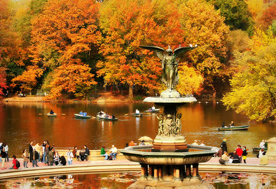 Fall in Central Park, New York (2)