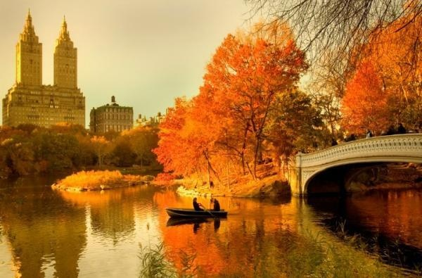 Fall in Central Park, New York (8)