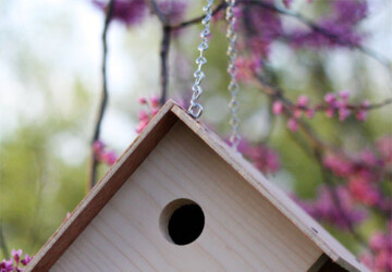 22 Great DIY Birdhouse Ideas for Your Garden - garden, diy, birdhouse