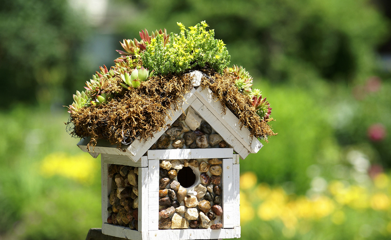 22 great diy birdhouse ideas for your garden style for Easy birdhouse ideas
