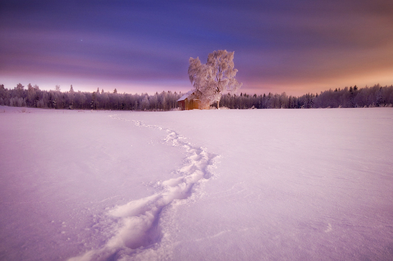 Phenomenal Photography by Photographer Mikko Lagerstedt (10)