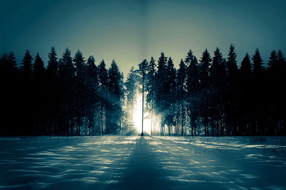 Phenomenal Photography by Photographer Mikko Lagerstedt (22)