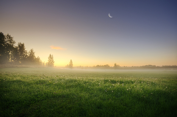 Phenomenal Photography by Photographer Mikko Lagerstedt (3)