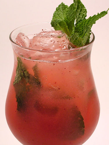 The Best Summer Cocktail Recipes (19)