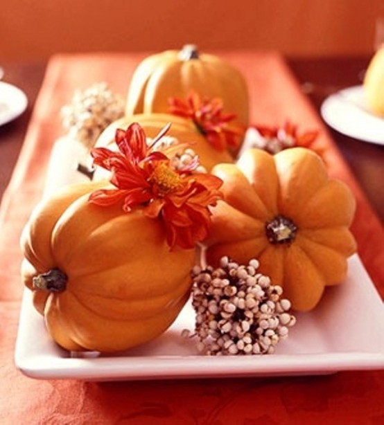 23 Great Fall Decoration Ideas with Pumpkins (2)