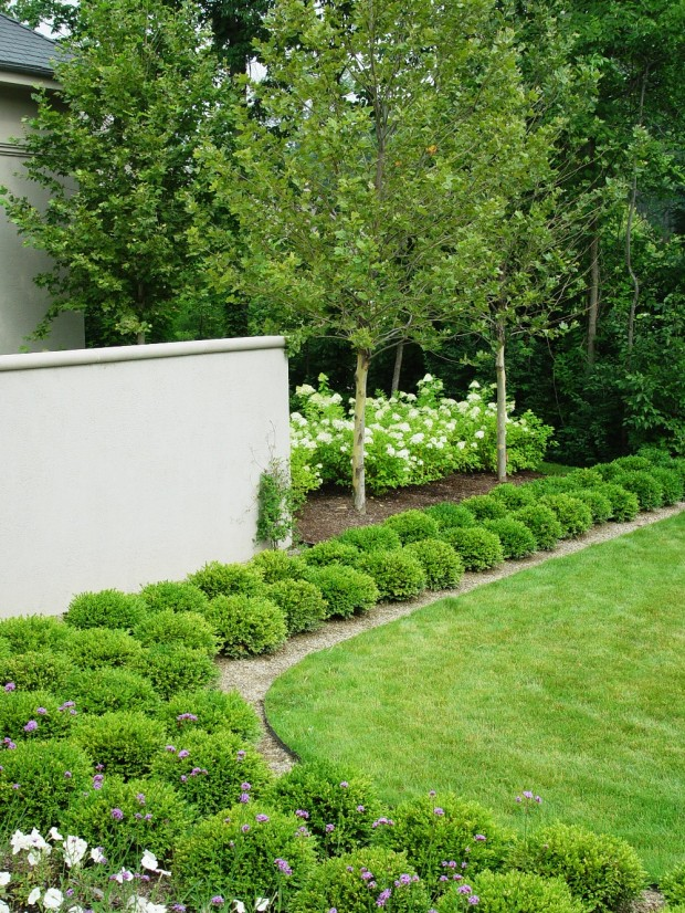 24 Beautiful Boxwood Garden Ideas