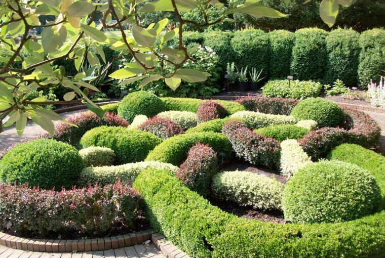 24 Beautiful Boxwood Garden Ideas - garden, Boxwood Garden
