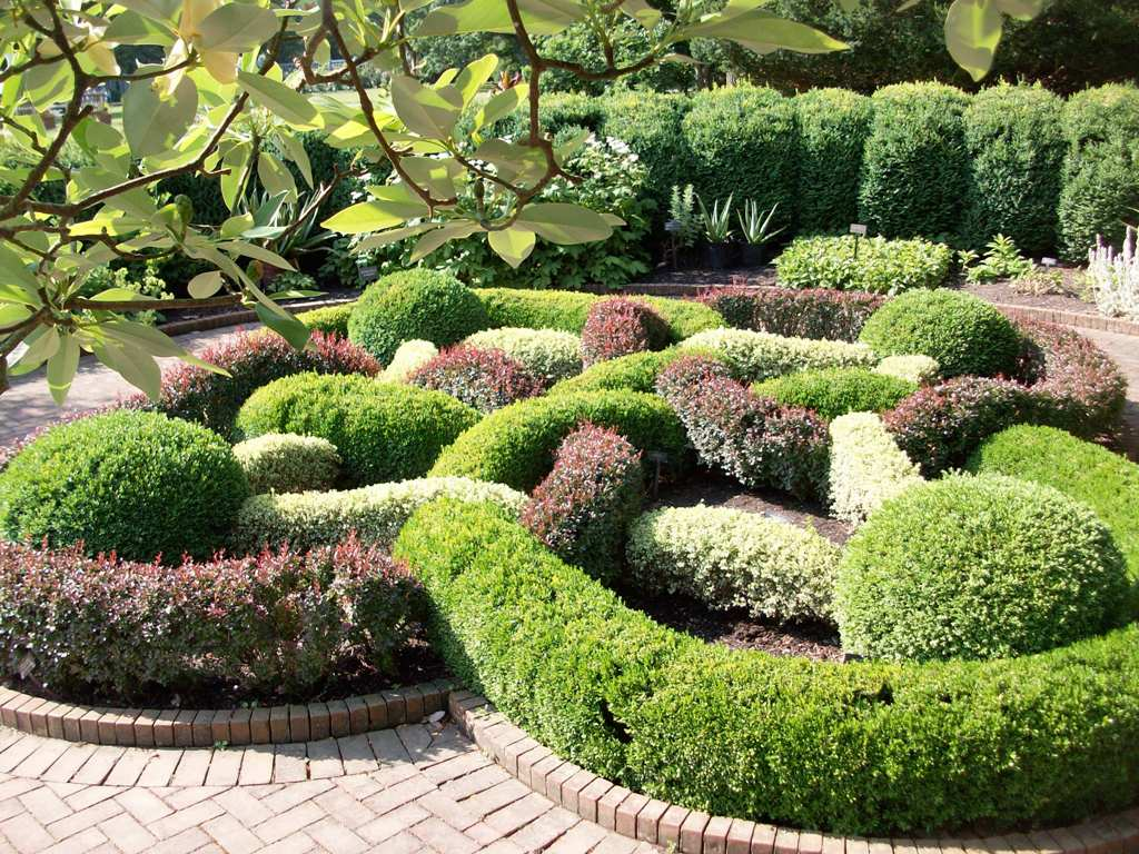 24 Beautiful Boxwood Garden Ideas Style Motivation