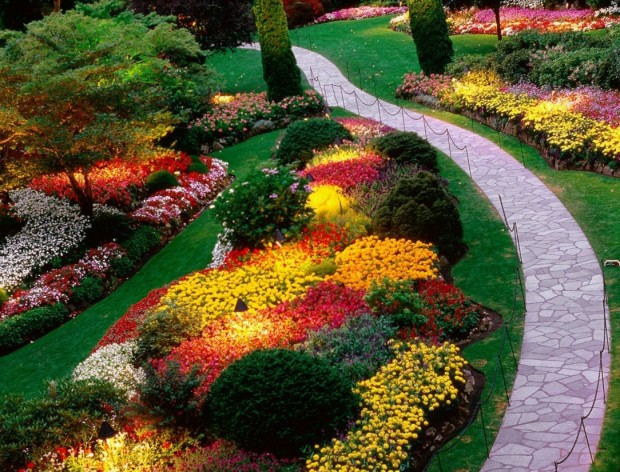 flower garden ideas 5