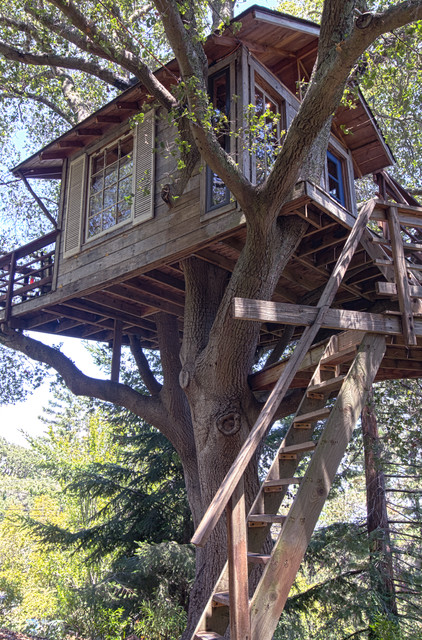 18 Amazing Tree House Design Ideas that Your Kids Will Love (7)