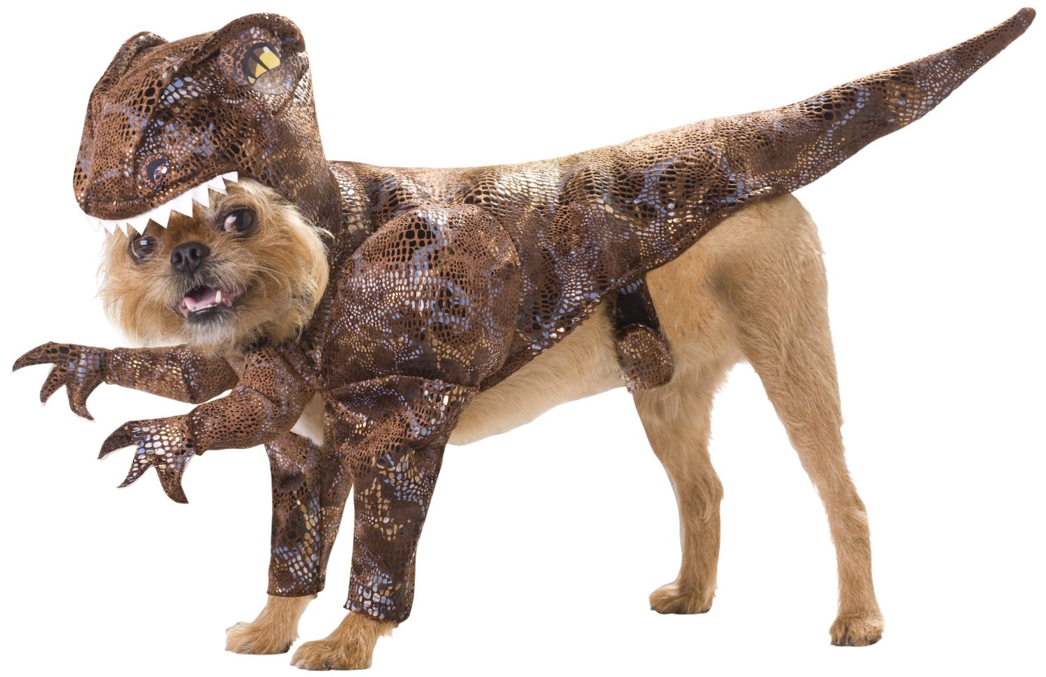 20 absolutely amazing dog halloween costumes - Dogs With Halloween Costumes On
