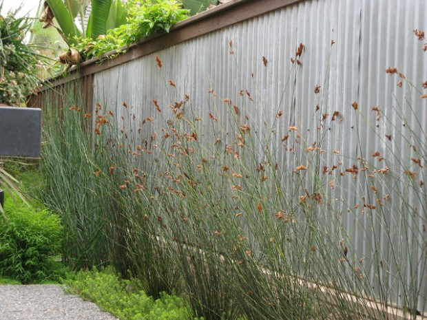 20 Amazing Ideas for Your Backyard Fence Design (5)