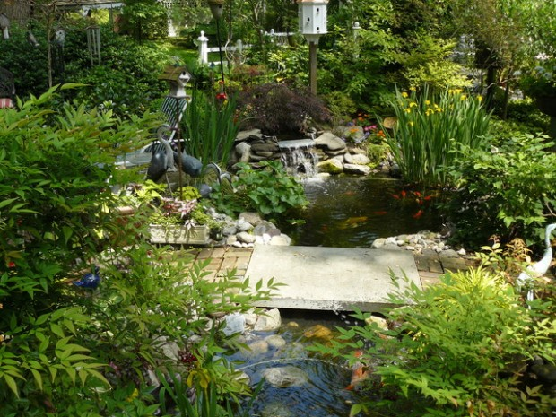 22 Great Pond Design Ideas for Your Garden (10)