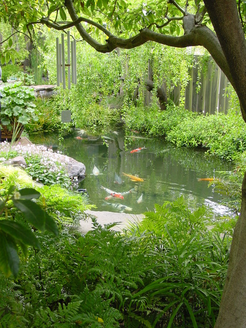 22 Great Pond Design Ideas for Your Garden (11)
