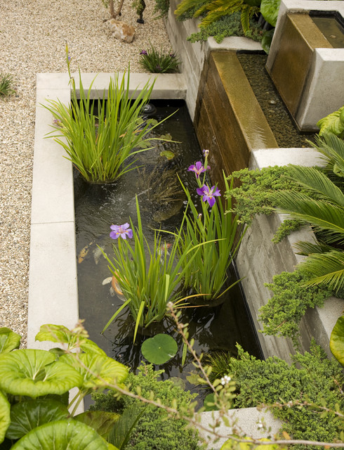 22 Great Pond Design Ideas for Your Garden (12)