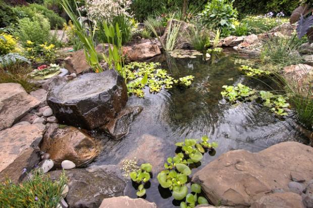 22 Great Pond Design Ideas for Your Garden (15)