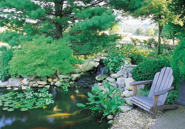 22 Great Pond Design Ideas for Your Garden (17)