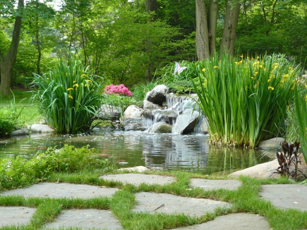 22 Great Pond Design Ideas for Your Garden (7)