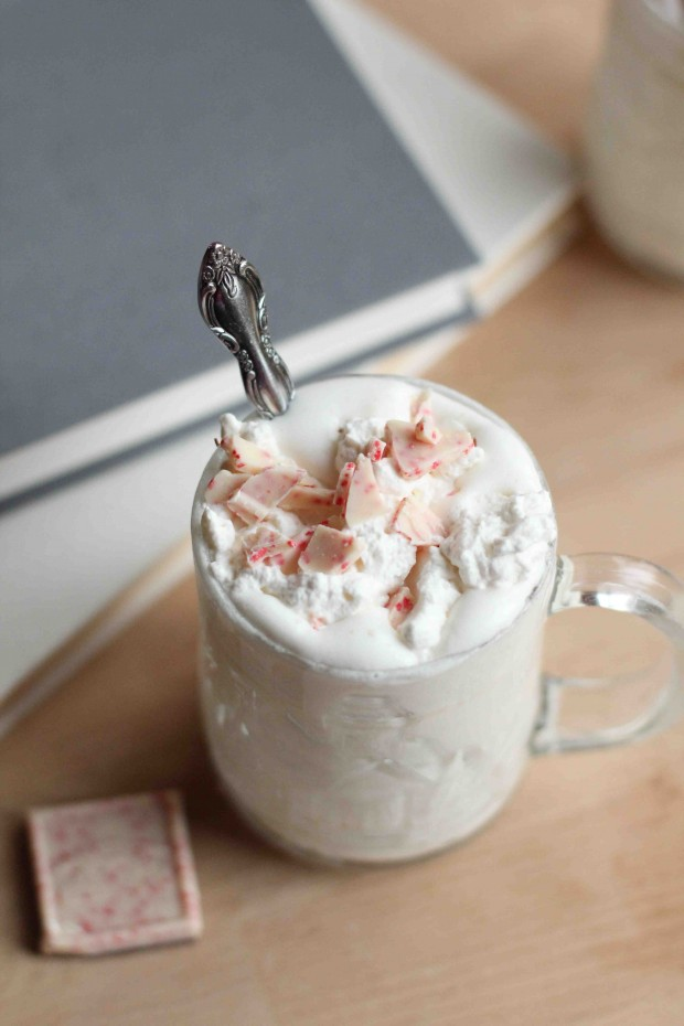 Hot Drinks for Cold Days 20 Great Recipes (20)