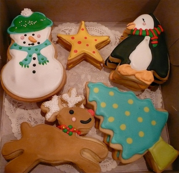 17 Delicious Christmas Cookie Samples (3)