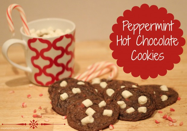 24 Sweet and Tasty Christmas Cookie Recipes (20)