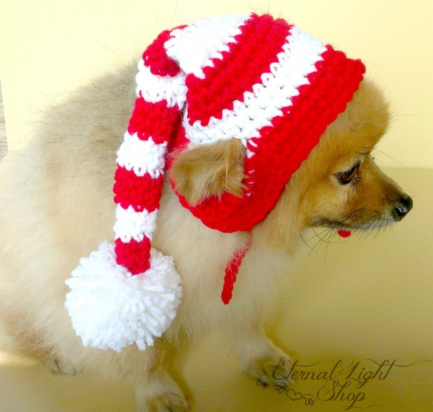 30 Extraordinary Christmas Pet Clothing and Accessory Pieces (12)
