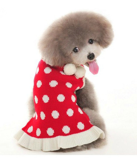 30 Extraordinary Christmas Pet Clothing and Accessory Pieces (15)