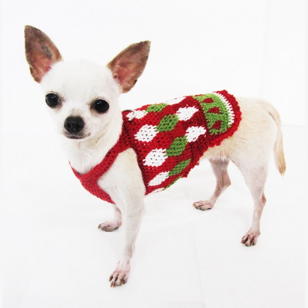 30 Extraordinary Christmas Pet Clothing and Accessory Pieces (27)