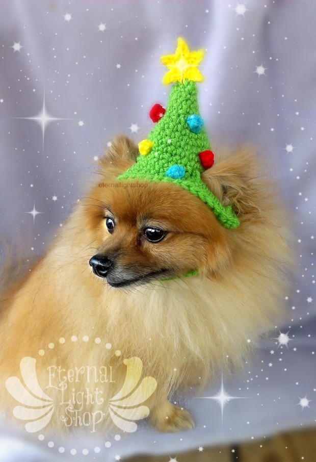 30 Extraordinary Christmas Pet Clothing and Accessory Pieces (29)